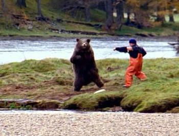 salmon_fight_400_304.jpg